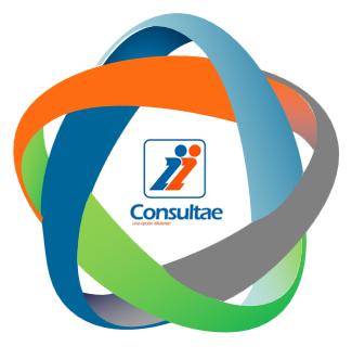 Servicios de externalización administrativa de Consultae