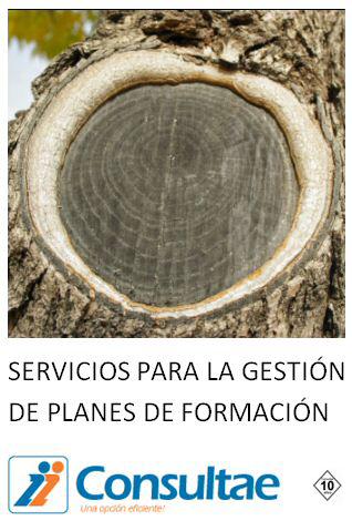 servicios_gestion_formacion