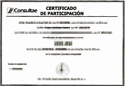 Certificado de participación en curso bonificado