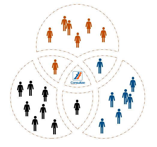Red de socios colaboradores