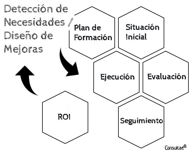 Detección de necesidades en el plan de formación