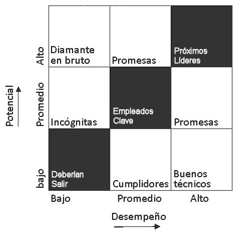Matriz de 9 x 9 evaluación del desempeño