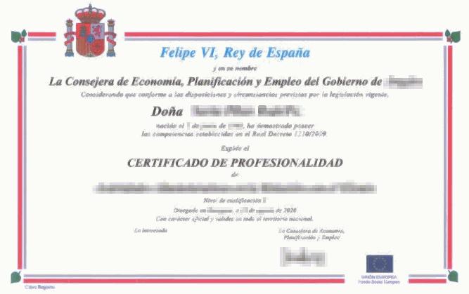 Ejemplo de certificado de profesionalidad